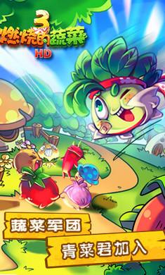 燃烧的蔬菜3HD游戏截图2